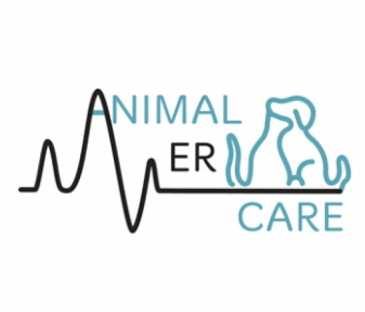 best-veterinarians-colorado-springs-co-usa