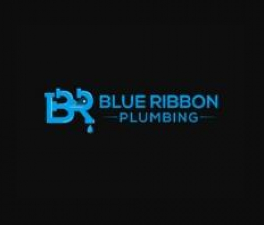 best-plumbers-abbotsford-bc-canada