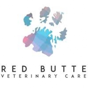 best-animal-doctor-holladay-ut-usa