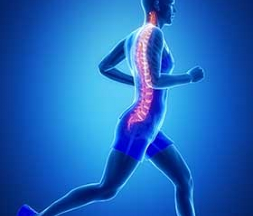 best-doctor-orthopedic-beverly-hills-ca-usa