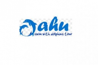 OahuSwimwithDolphinsTourTicket