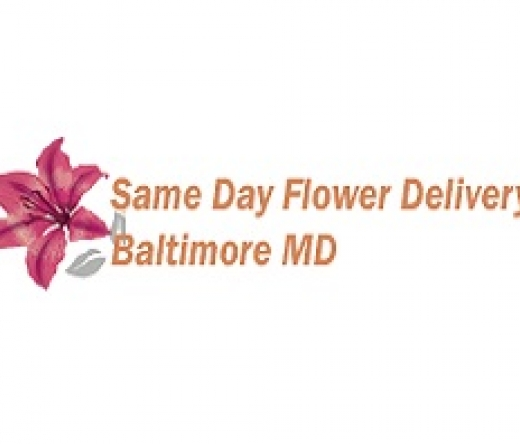best-florists-retail-baltimore-md-usa