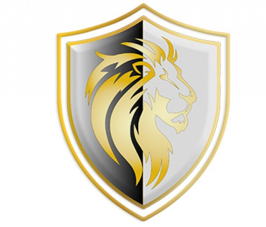 lionsgroupfinancialcorp