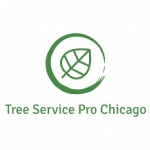 best-tree-service-chicago-il-usa