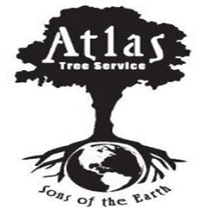 best-arborist-south-jordan-ut-usa