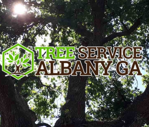 best-tree-service-albany-ga-usa