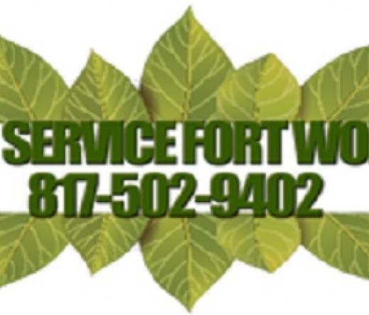 best-tree-service-fort-worth-tx-usa